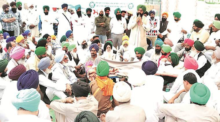 As Elections Approach, Cane Farmers In Punjab Step Up Pressure With Fresh Protests Over Dues