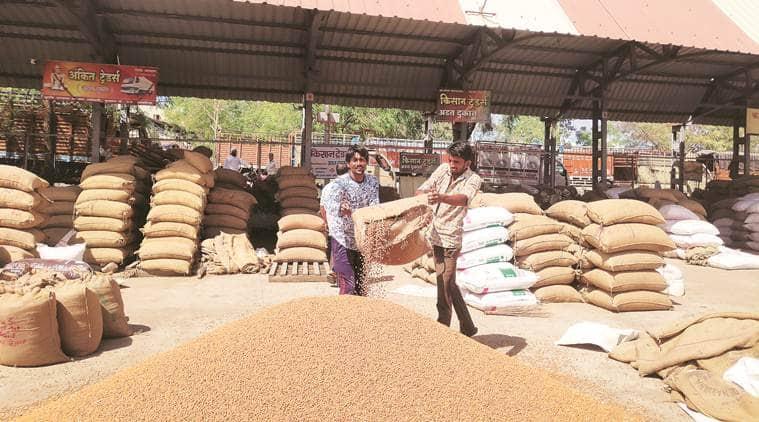 Maharashtra, Maharashtra polls, Maharashtra farmers, Maharashtra farmers crisis, wholesale APMC, indian express