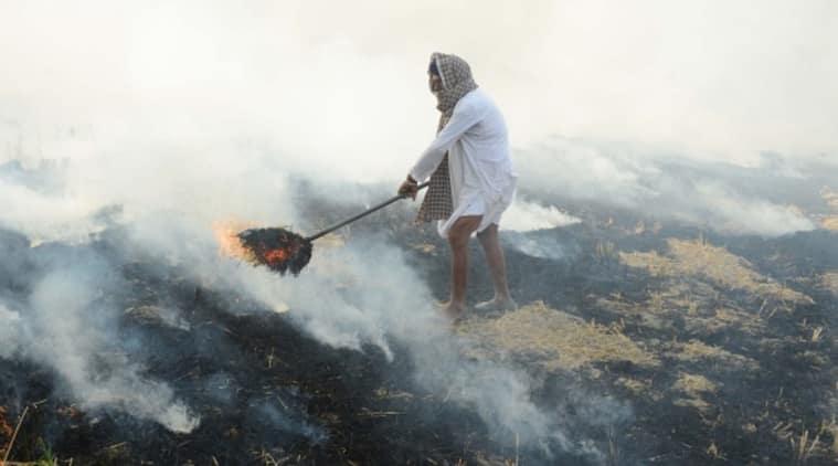 crop residue burning, urban emissions, Nature Sustainability, World Health Organization, indian express, indian express news,