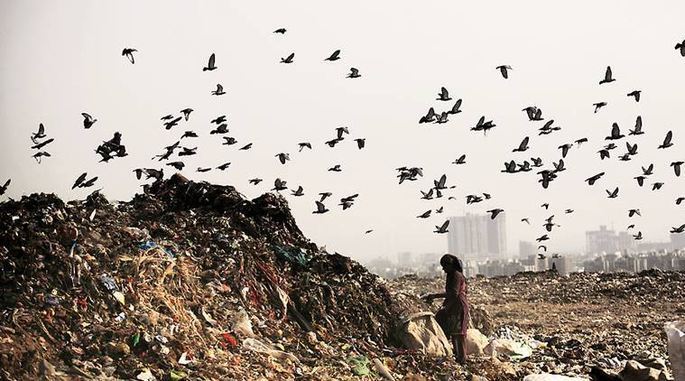 Ghazipur landfill, Ghazipur landfill height, height of Ghazipur landfill, Gautam Gambhir Ghazipur landfill, Express Explained, Indian Express