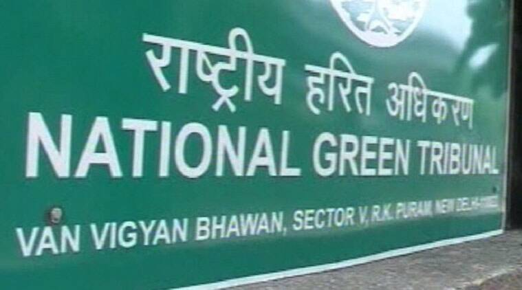 The green panel said it was extremely dissatisfied with the solid waste management in the city and the AAP government cannot just lie back and shun its responsibilities.
