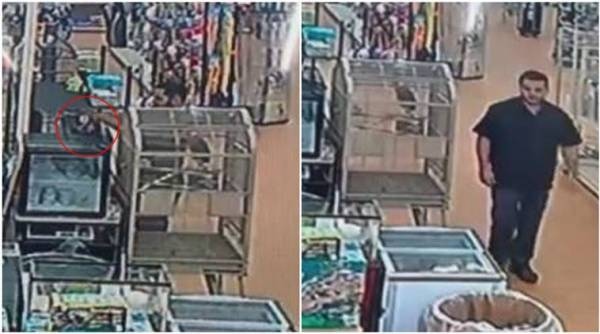 snake thief, man puts python in pants, robbery, bizarre, stolen python, cctv footage, Michigan, US, trending, indian express, indian express news