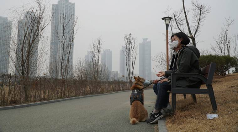 Pork for pollution? How South Koreans fight smog with grease