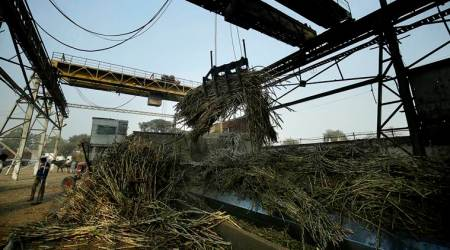 Sugar mills protest 'high' sales quota, say it will make clearing cane dues difficult