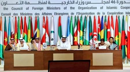 Terrorism is destroying lives, destabilising regions: Sushma Swaraj at OIC