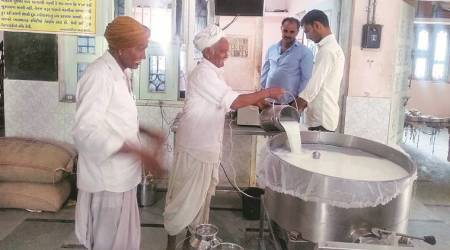 Dairy farmers protest, Covid-19 pandemic, Pune news, Maharashtra news, Indian express news