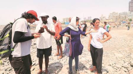 Coastal Road project: Unprecedented pace of reclamation, Bombay High Court told