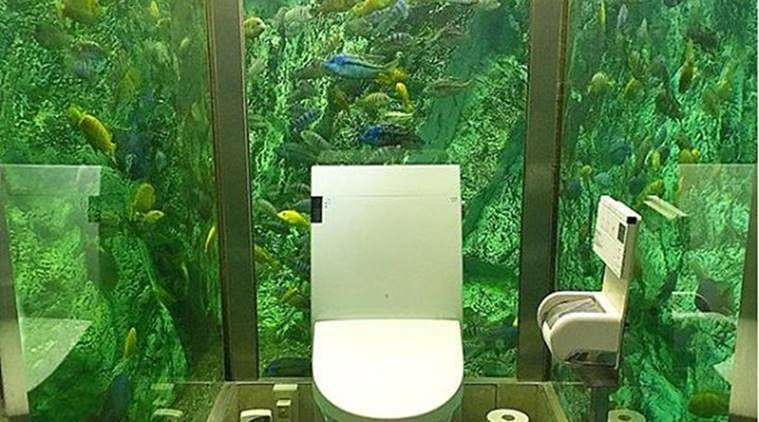 Japan's Coolest Cafe Bathroom, aquarium in washroom