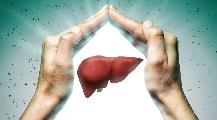 world liver day, world liver day 2019, liver, liver disease, indian express