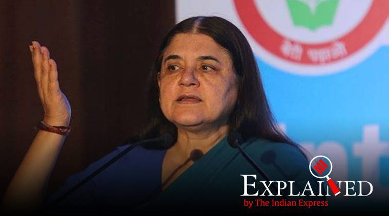 Maneka Gandhi's 'won't help Muslims' remark: What the Model Code of Conduct says on invoking religion during polls