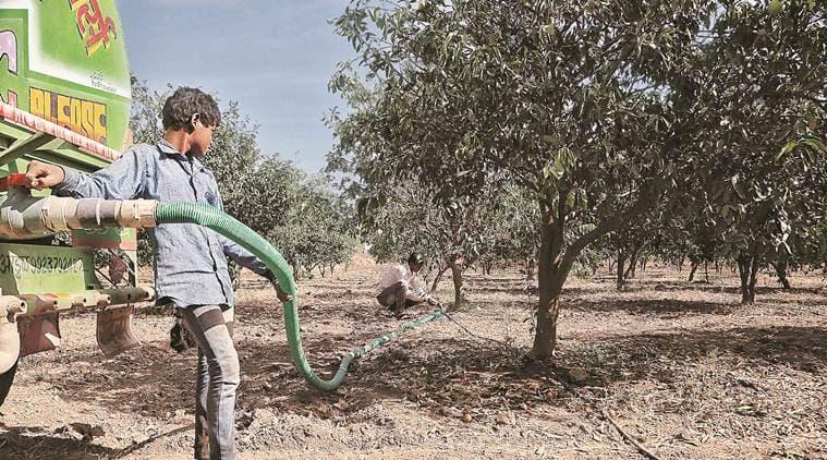 Marathwada's agrarian crisis, BJP's nationalism campaign
