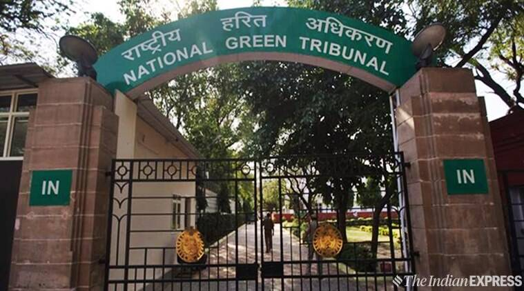 NGT forms committee to look into Yamuna floodplain erosion in Sonipat