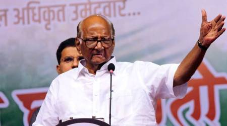 sharad pawar, Congress NCP alliance, NCP, maharashtra lok sabha elections 2019, lok sabha elections 2019, lok sabha elections, mumbai news, mumbai lok sabha polls