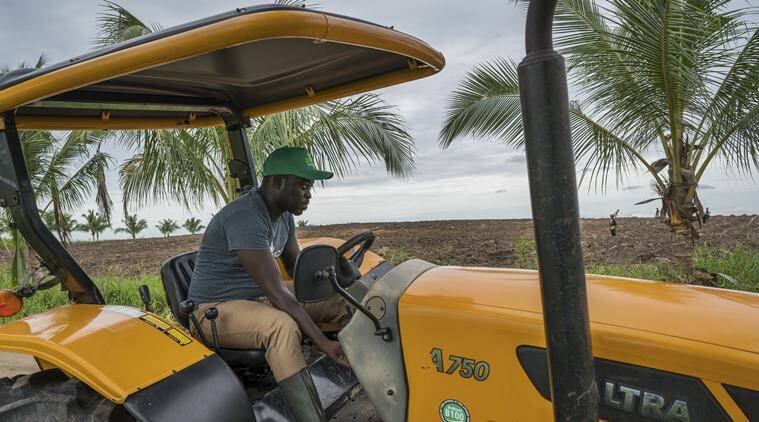 Millennials 'make farming sexy' in Africa, where tilling the soil once meant shame