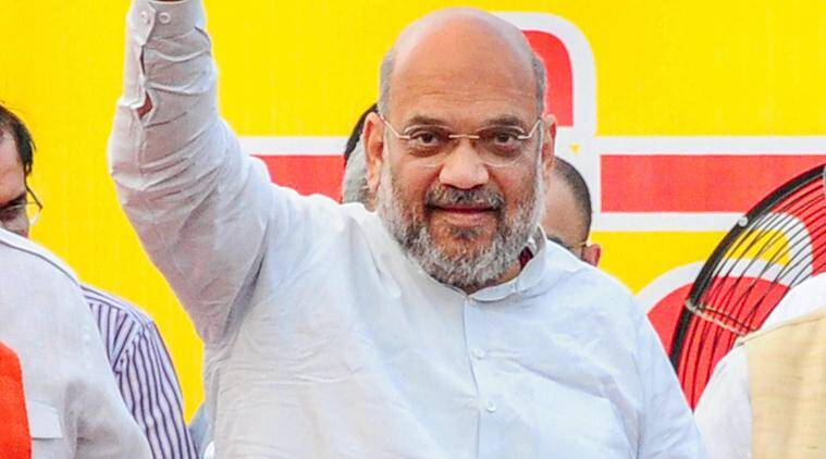 Will scrap Article 370 if BJP voted back to power: Amit Shah