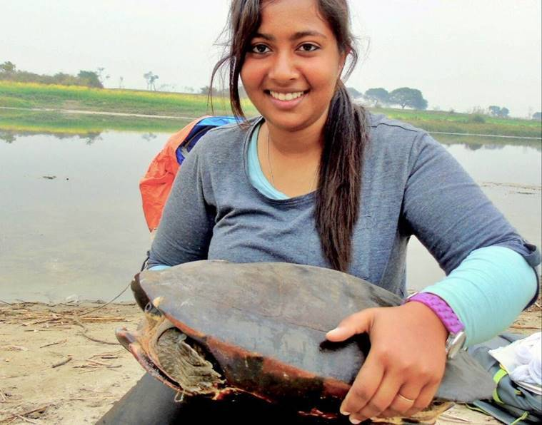 India Turtles, India Tortoise, Turtles in India, Indian Turtles, World turtle day, Freshwater Turtles and Tortoises of India, FTTI India, Indian Express