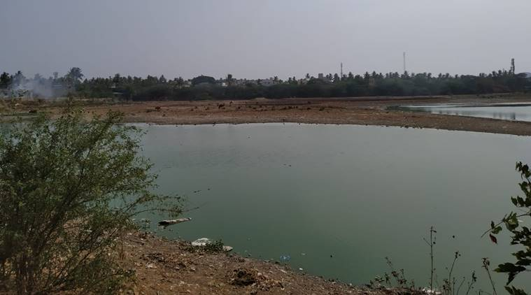Image result for chitlapakkam lake people cleaning