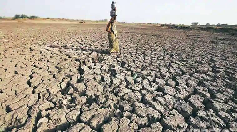 India suffers driest June in five years, fears for crops and economy