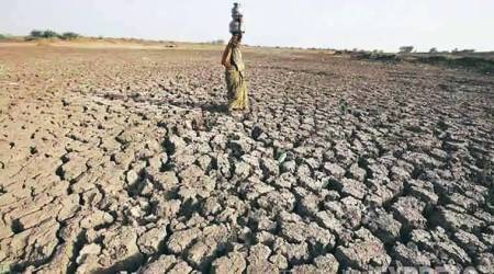 India suffers driest June in five years, fears for crops