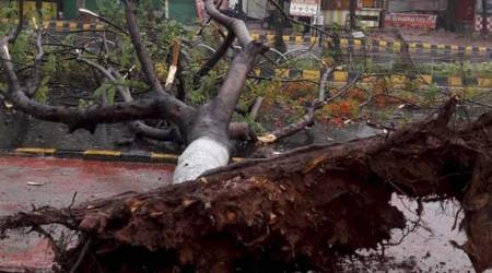 Cyclone Fani photos: 3 dead in Odisha as storm weakens to 'very severe'