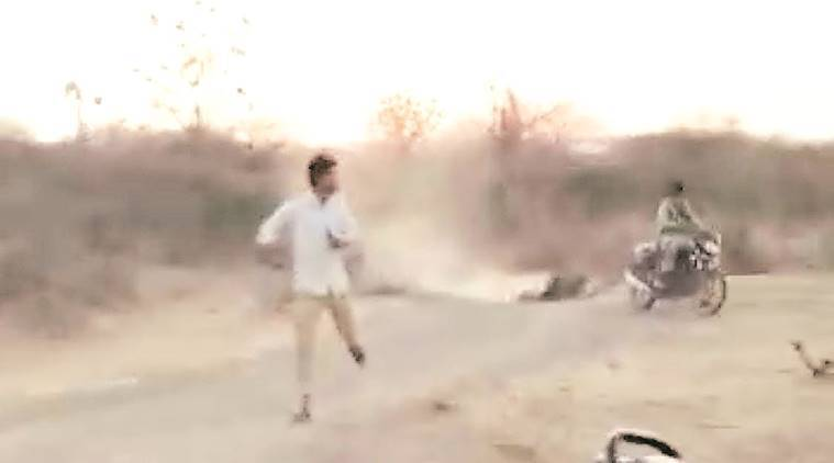 Gujarat: Wildlife tracker identified in lion viral video, questioned by forest department