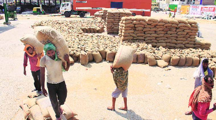 Gunny bag shortage amid bumper wheat harvest triggers blame game in Punjab