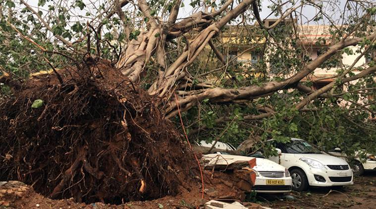 cyclone fani, cyclone fani odisha, cyclone fani odisha destruction, cyclone fani destruction, cyclone fani news, naveen patnaik, odisha chief minister, india news, Indian Express