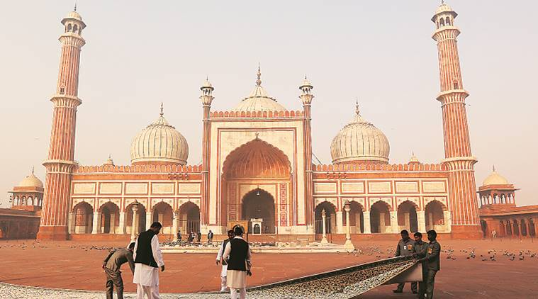 tiktok, tiktok ban, jama masjid, tiktok ban in jama masjid, announcement on tiktok ban, jama masjid shahi imam, tiktok videos, indian express