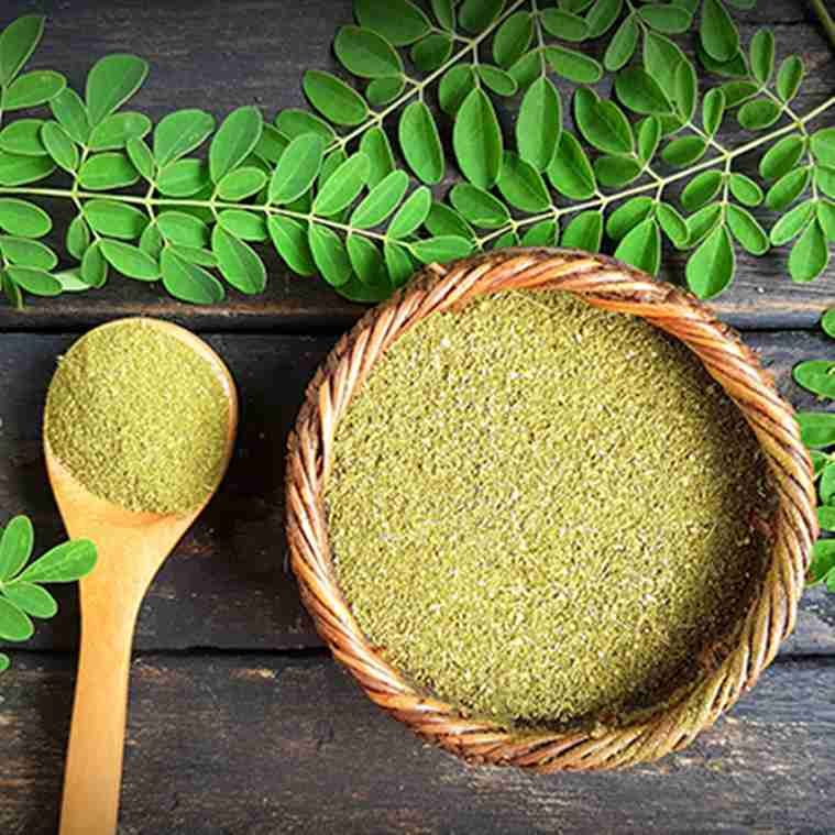 moringa, skincare, skincare for men, indian express, indian express news