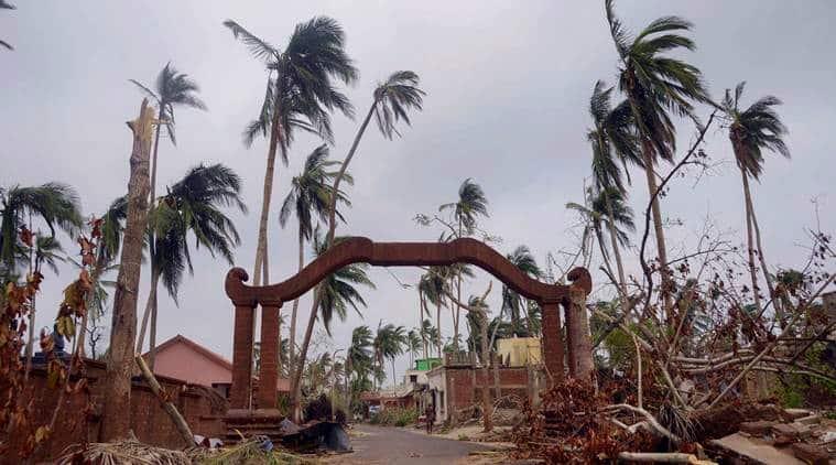 Odisha govt prepares massive plantation drive