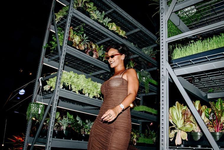 Rihanna,Rihanna Fenty Beauty, Rihanna Puma Fenty