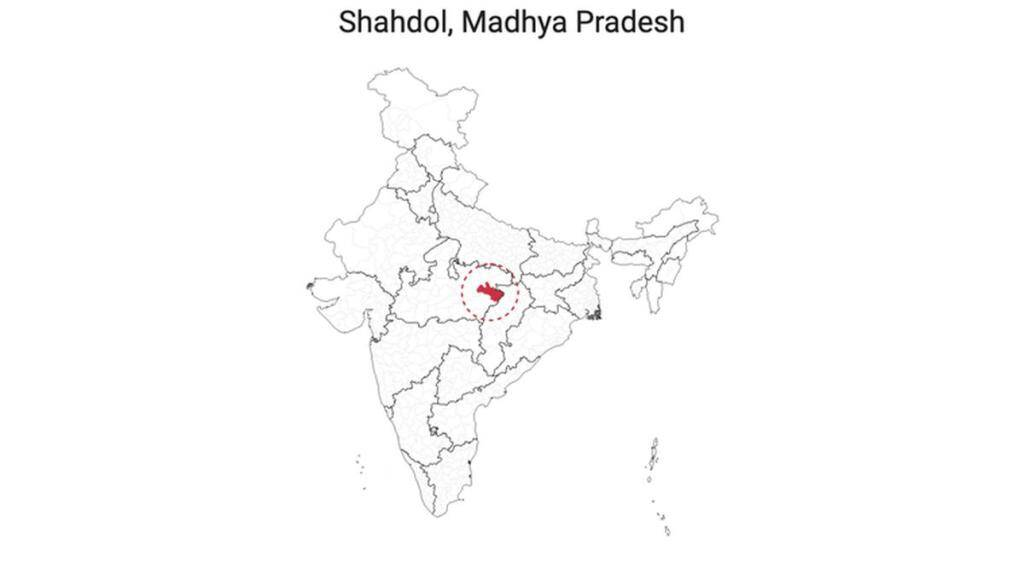 indian election result 2019 - photo #14
