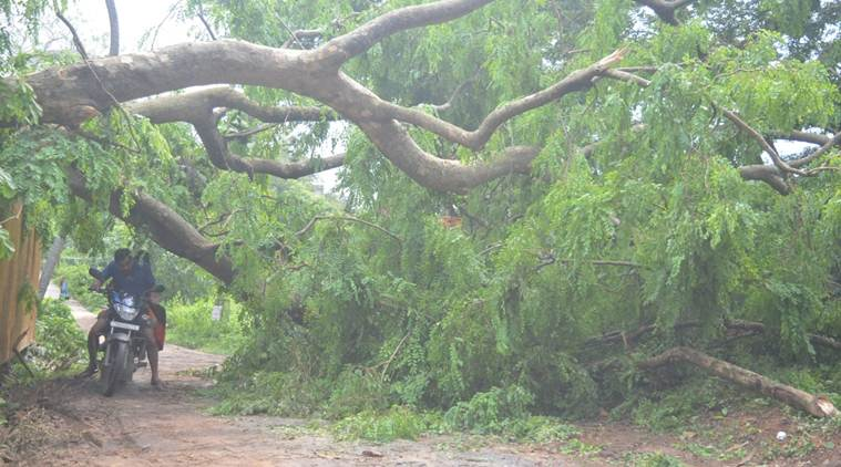 At leasr 32 houses damaged, communication distrupted due to thunderstorm in Tripura