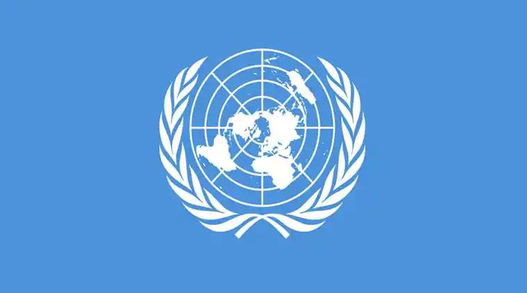 India must have permanent seat in UN Security Council: German envoy