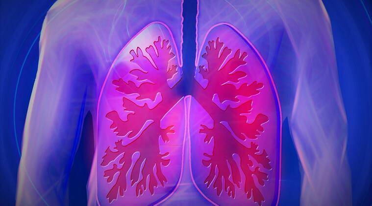 damaged lungs, lungs, lungs transplantation, health, indian express, indian express news