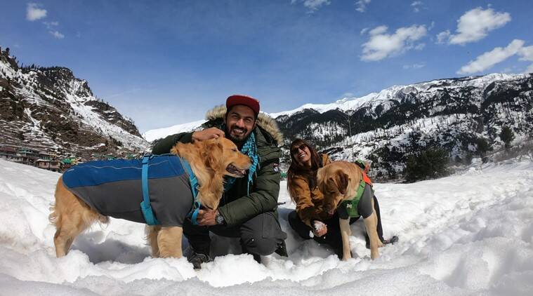 travel, travel with dogs, dogs, dog photos, indian express, indian express news