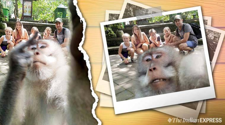Family vacation Bali, Bali family vacation, Indonesia Bali vacation, monkey incident, monkey selfie with family, The hicks family, monkey middle finger photo, monkey family vacation bali, indian express
