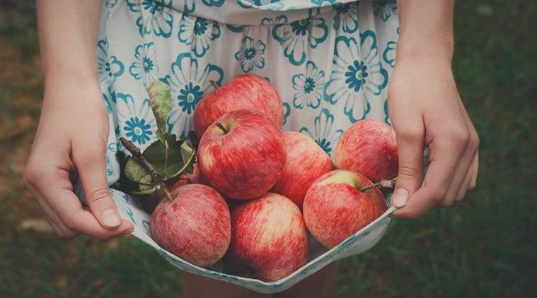 apple, diabtics meal plan, meal plan for diabetes patients, diabetes indian express, indian express news