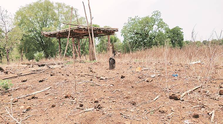 13 years later, 15 families back in Bastar: 'Happy but leave us alone'