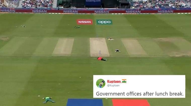 icc world cup, cricket world cup, sl vs sa, south africa vs sri lanka, bees stop world cup match, bees stop cwc 19, sl vs sa bees attack, bees cricket match stopped, cwc memes, indian express