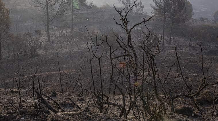 europe heatwave, catalonia forest fire, catalonia fire, france heatwave, forest fires in france, forest fires in catalonia, world news, Indian Express
