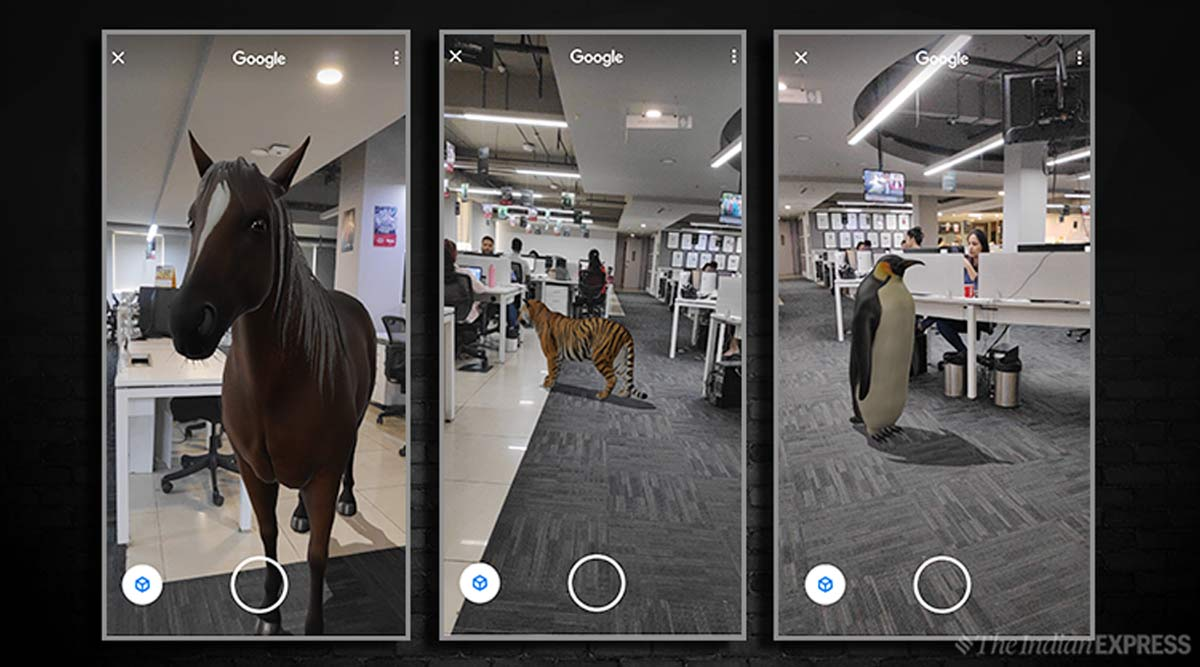 Tiger in your room! Google AR search lets you bring 3D animals in ...