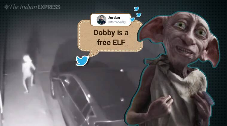 Creepy security footage has people wondering if Dobby is real