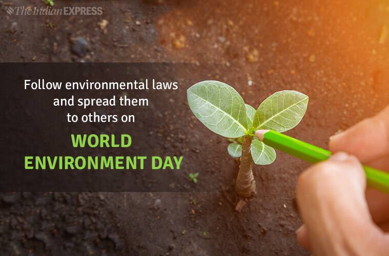 World Environment Day 2019: Theme, Slogans, Quotes, Images, Status