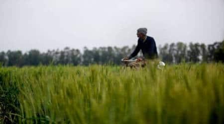 crop insurance scheme, gujarat, gujarat bjp, gujarat congress, gujarat farmers,