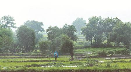 Crop Insurance: Time to reboot PM's flagship scheme; let it be weather-based