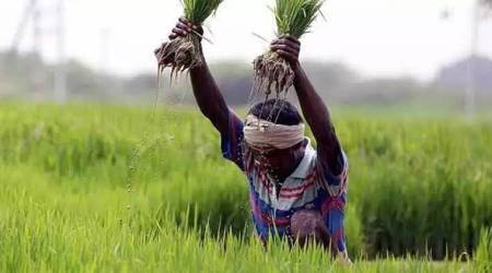 Essential Commodities Act, Essential Commodities Act scrap, niti ayog meeting, niti ayog Essential Commodities Act, raj fod laws, indian express news