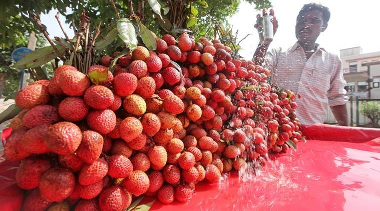 Odisha orders laboratory test of Litchi