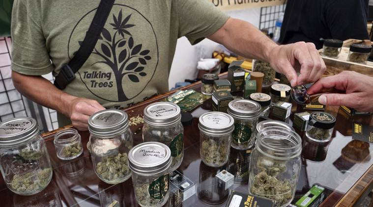 California plans to act tough on illegal marijuana market