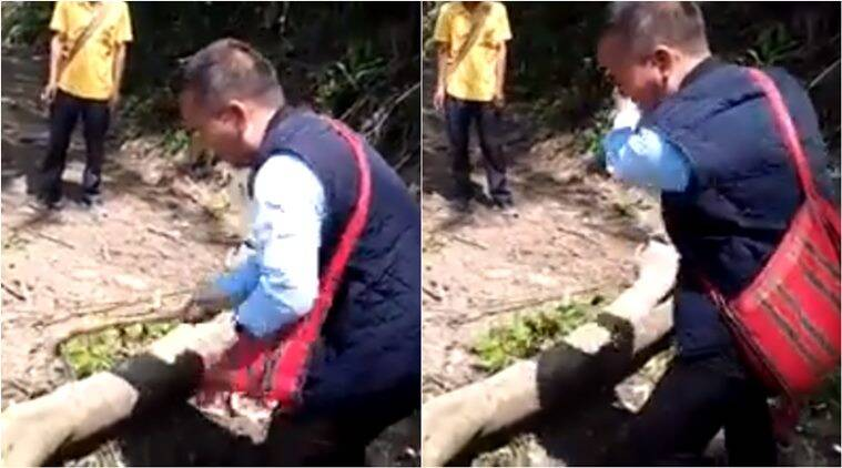 mizoram, mizoram dy speaker, Lalrinawma mizo dy speaker, Lalrinawma cuts tree clear road, mizo dy speaker cut tree to clear road, viral videos, north east india news, good news, indian express
